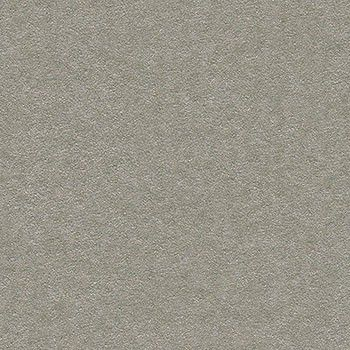 Plic DL Platinum Silver - poza 1