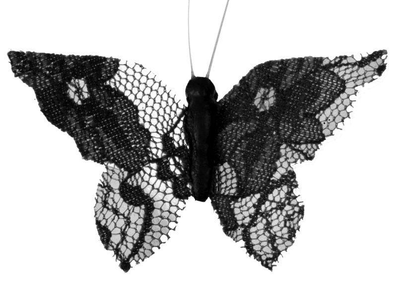 fluturi  dantela neagra